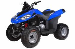 ATV / UTV / SXS - E-TON ATV and UTV