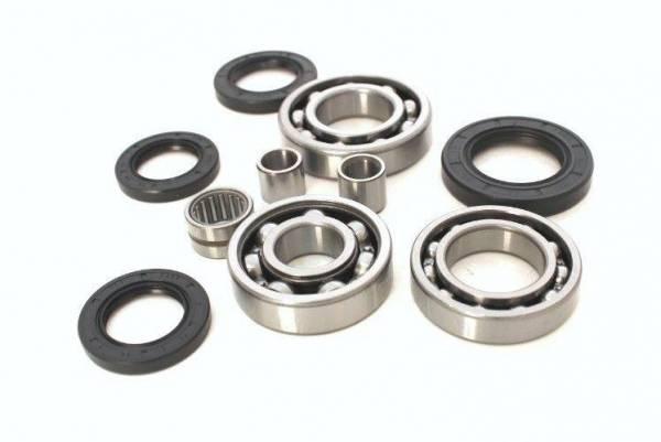 Boss Bearing - Boss Bearing Rear Differential Bearings and Seals Kit